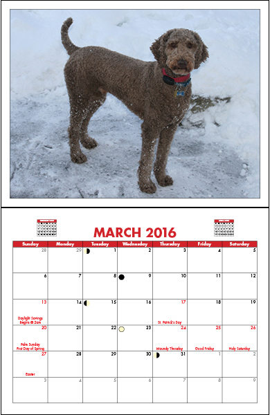 16242-11-Single-Page-Calendar_11x17_2-390x600-1.jpg